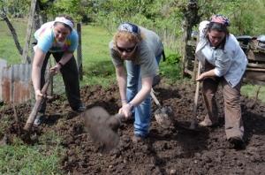 M_060512-cals-digging