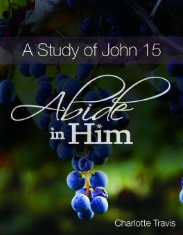 John 15 Cover
